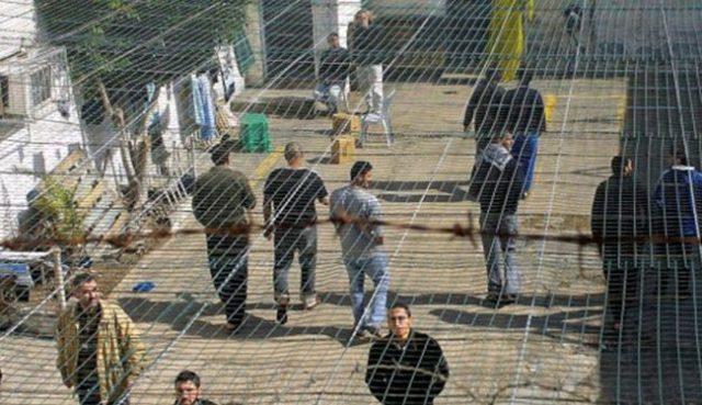 被以关押巴勒斯坦人绝食阿巴斯呼吁国际社会救助